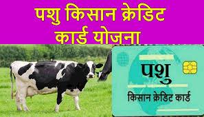 Pashu Kisan Credit Card